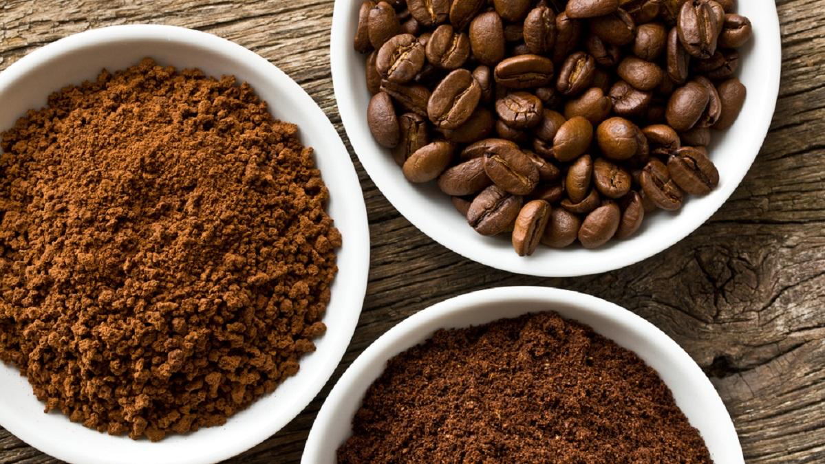 Instant Coffee Plant